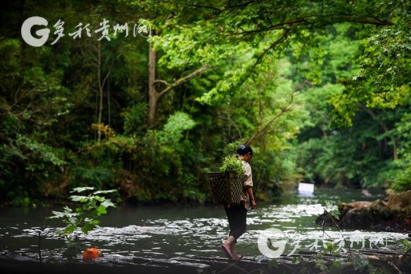 【生态文明·聚焦】从这里,走向生态文明新时代