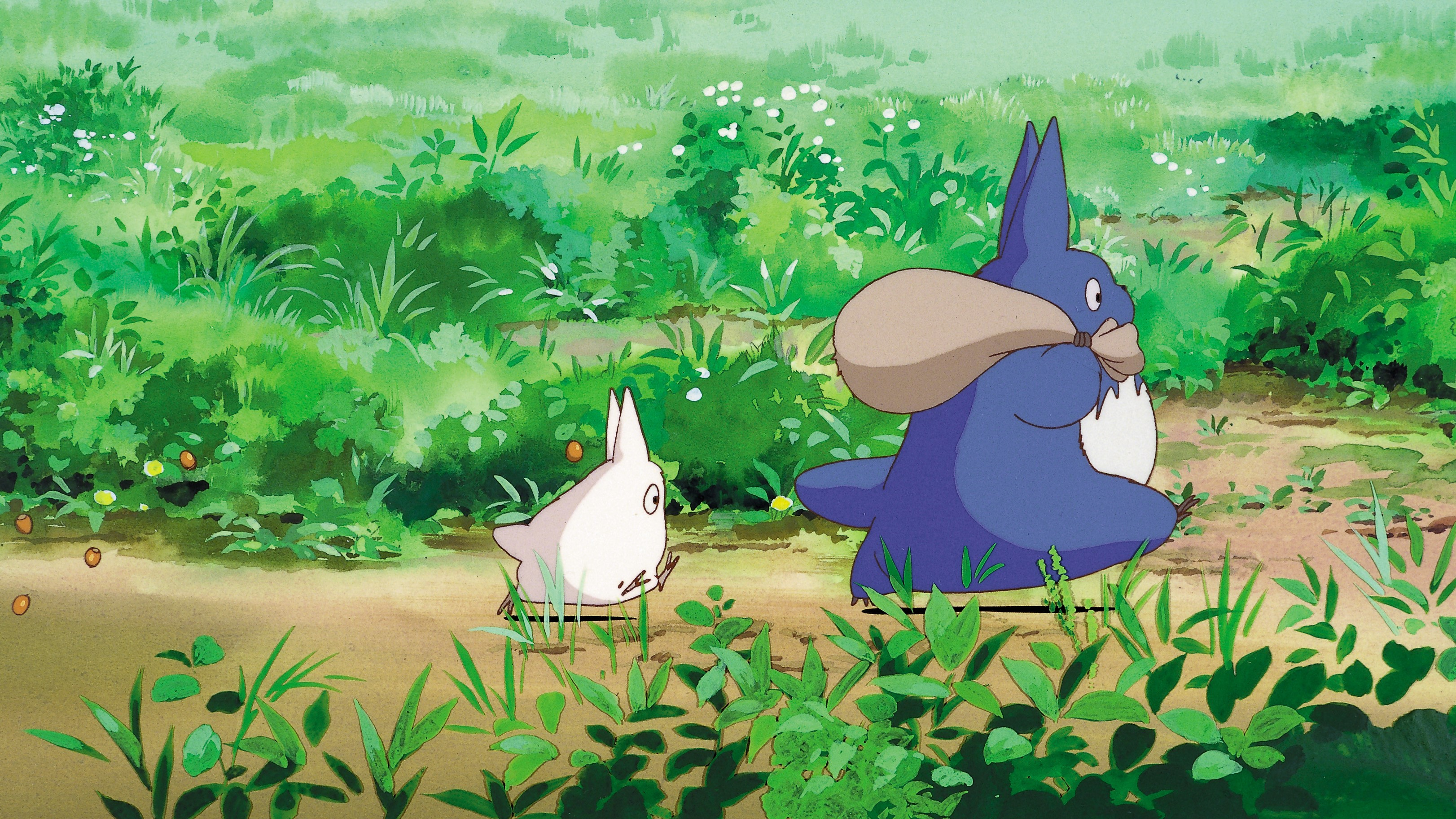 《龙猫》在中国,从未公映却是心中最爱   在中国,《龙猫》更是承载了从70后到90后几代人对动画电影的启蒙。许多中国影迷对动画片的认知轨迹,都是先由《龙猫》开始,逐渐了解到宫崎骏和吉卜力,十数年如一日地沉醉在《龙猫》所营造出的纯真年代中,梦想着能像片中女主角小梅一样无忧无虑地在充满奇思妙想的世界中自在遨游。自影片诞生至今的30年时间中,虽然也有无数优秀动画电影陆续上映,但《龙猫》却穿越时间的沙漏经久不衰,始终占据中国影迷心中No.
